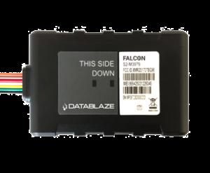 Falcon-image